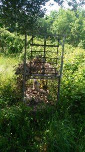 Sequestrata trappola per fauna selvatica dai Carabinieri Forestali a San Nicola Manfredi